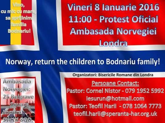 Datele programate ale protestelor in cazul Bodnariu